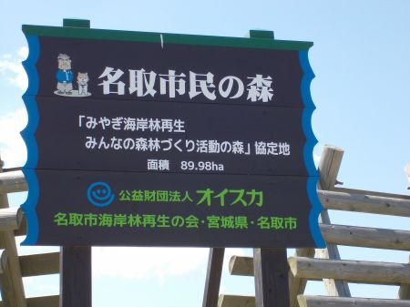 OISCA&ANA植林事業